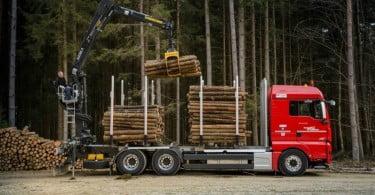 MAN camião indústria da madeira Logística e Transportes Hoje