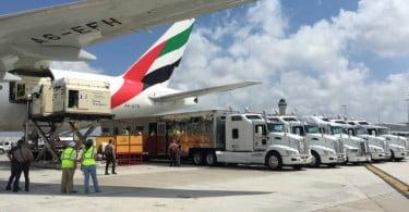 Emirates SkyCargo - transporte de cavalos - Logística e Transportes Hoje
