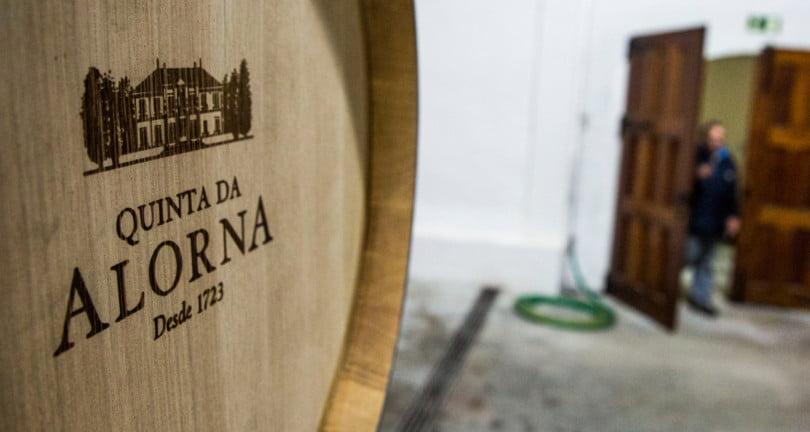 """Quinta da Alorna: """"Queremos produzir 2,5 milhões de garrafas a médio prazo"""""""