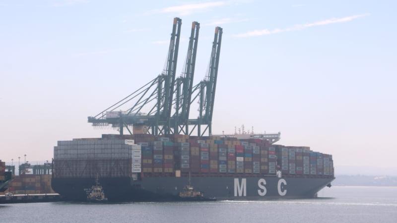 Porto de Sines recebe escala do MSC Eloane