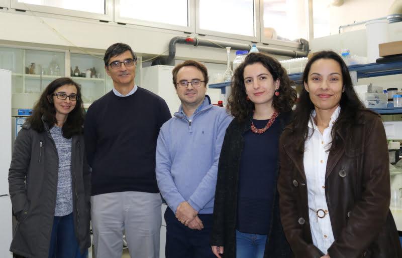 Investigadores portugueses desenvolvem molécula natural para substituir estireno