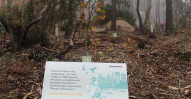 Jungheinrich Portugal promove ação de reflorestação na Tapada do Saldanha