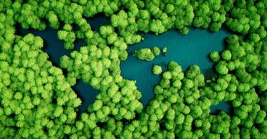 Governo lança novo pacote de 'medidas verdes'