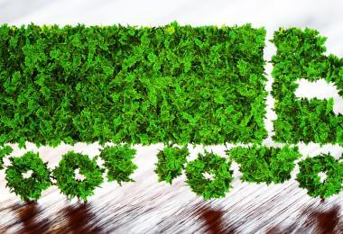 Parlamento Europeu discute Pacto Ecológico com transportes na mira